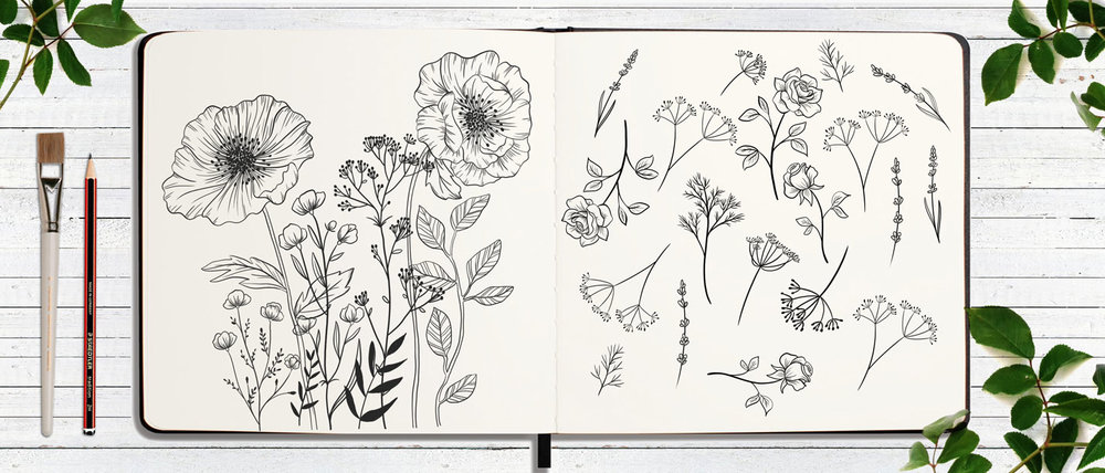 FLOWER-SKETCHBOOK-SAMARA-HARDY.jpg