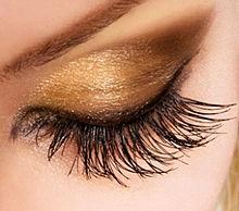 eyelash.jpg