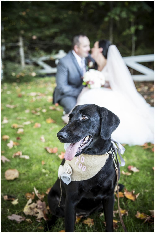 muskoka-wedding 146.jpg