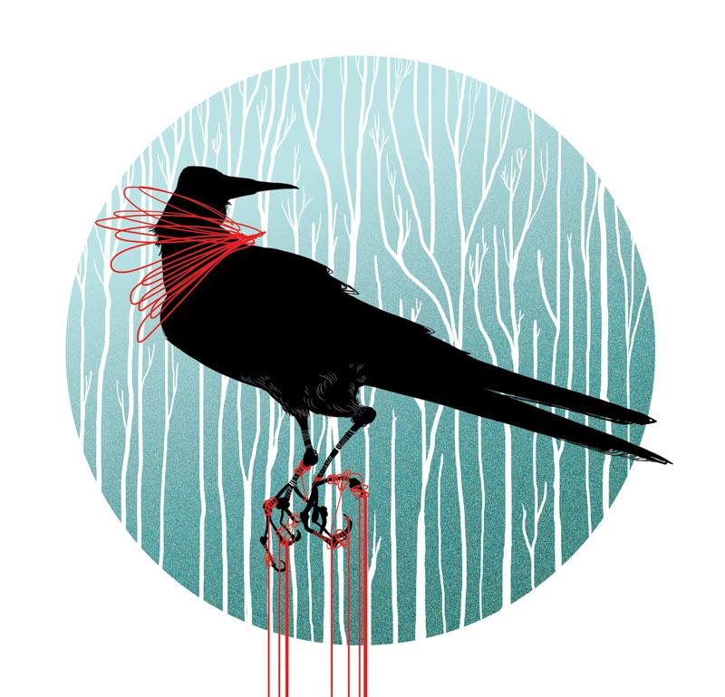 bird-of-prey2.jpg