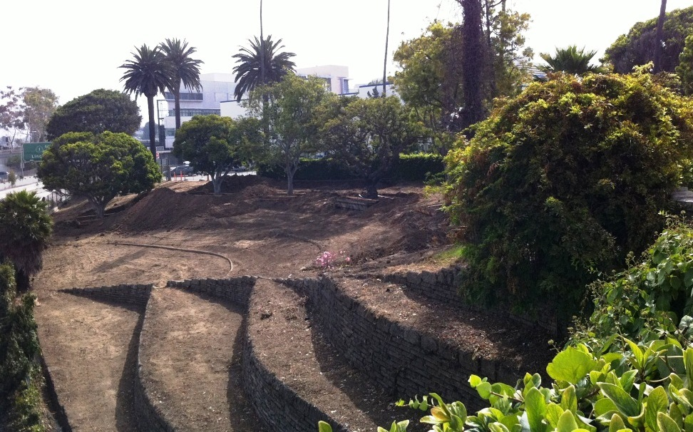 As part of the project, the ivy-covered slope between City Hall and the freeway was cleared out, revealing neat terracing