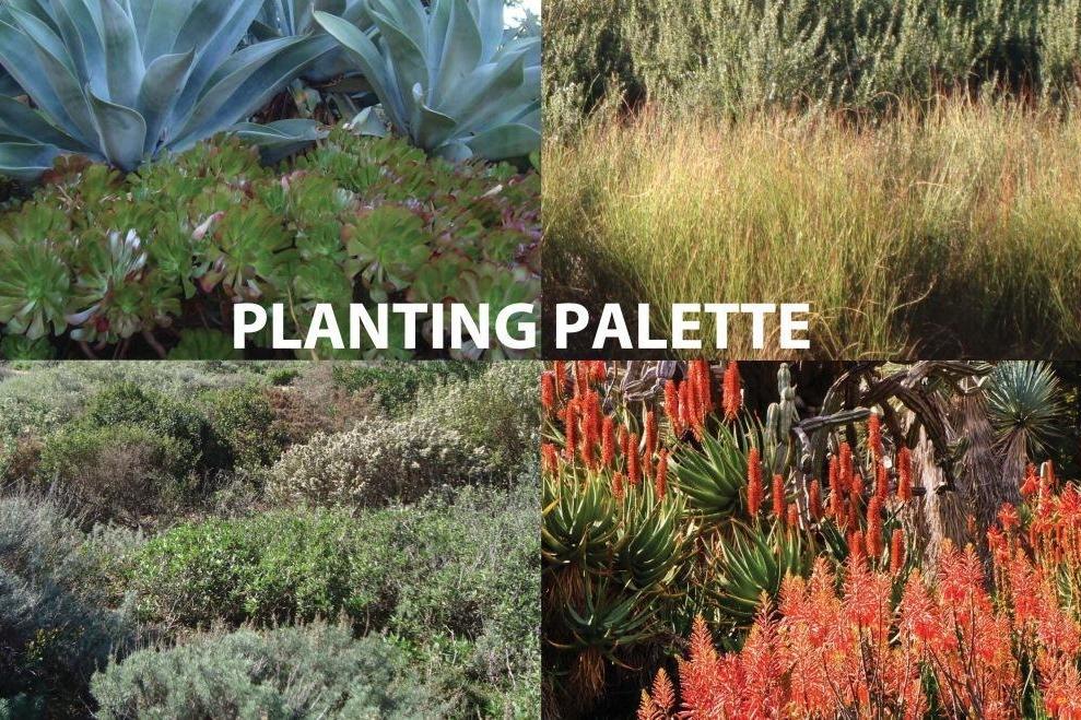 planting palette.jpg
