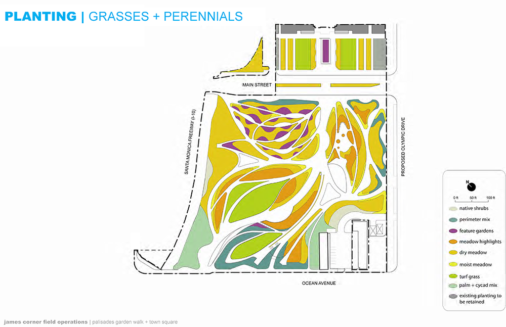 Planting Plan: Grasses & Perennials