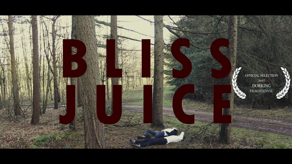 bliss juice festival