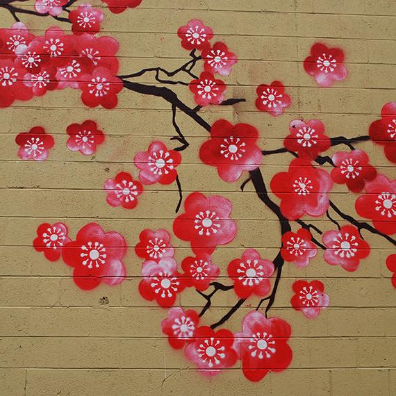 Cherry Blossoms, 2012