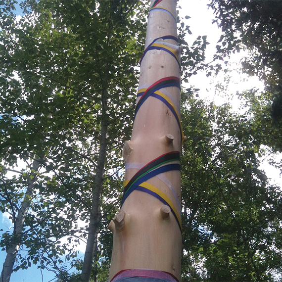 Lobstick Pine, 2012