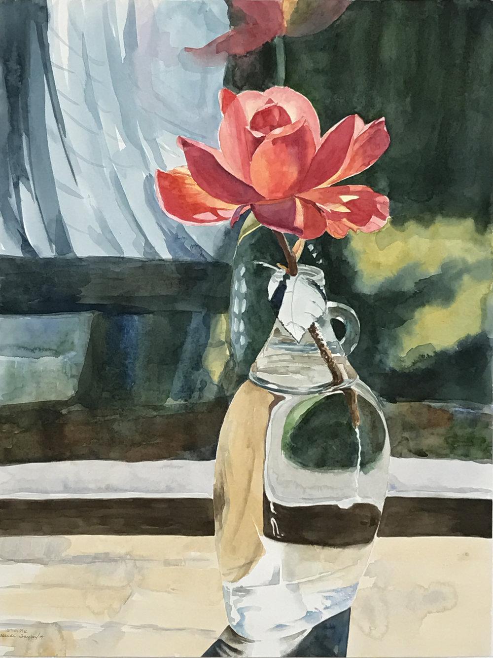 """""""Rosa"""" by Heidi F Taylor"""