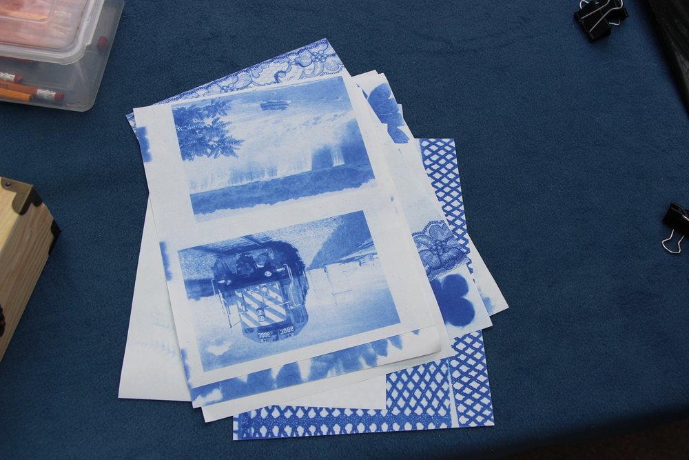 C Makowichuk - Sunprints Workshop ©TheWorksArt&DesignFestival _1971.JPG