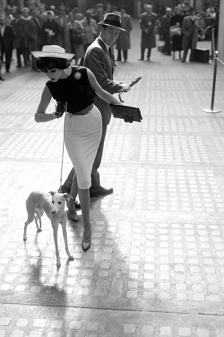 vintage puppy.jpg