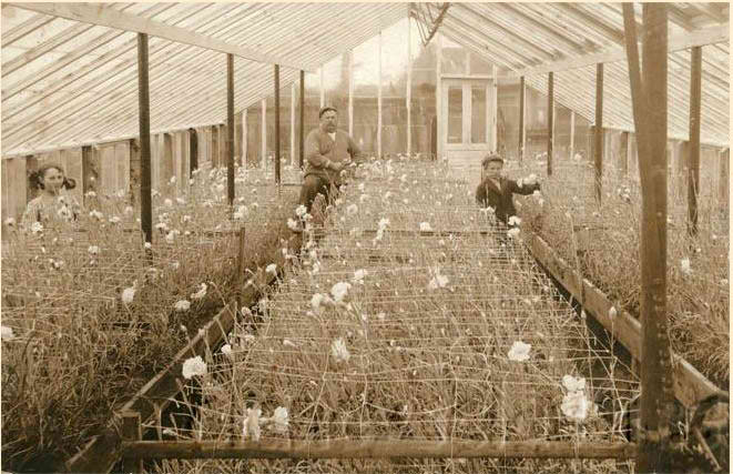 Undated photo of Fred Roll and family in one of the original greenhouses