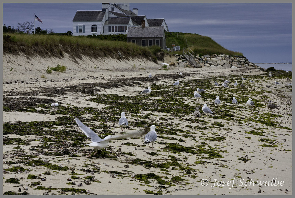 Nantucket03a.jpg