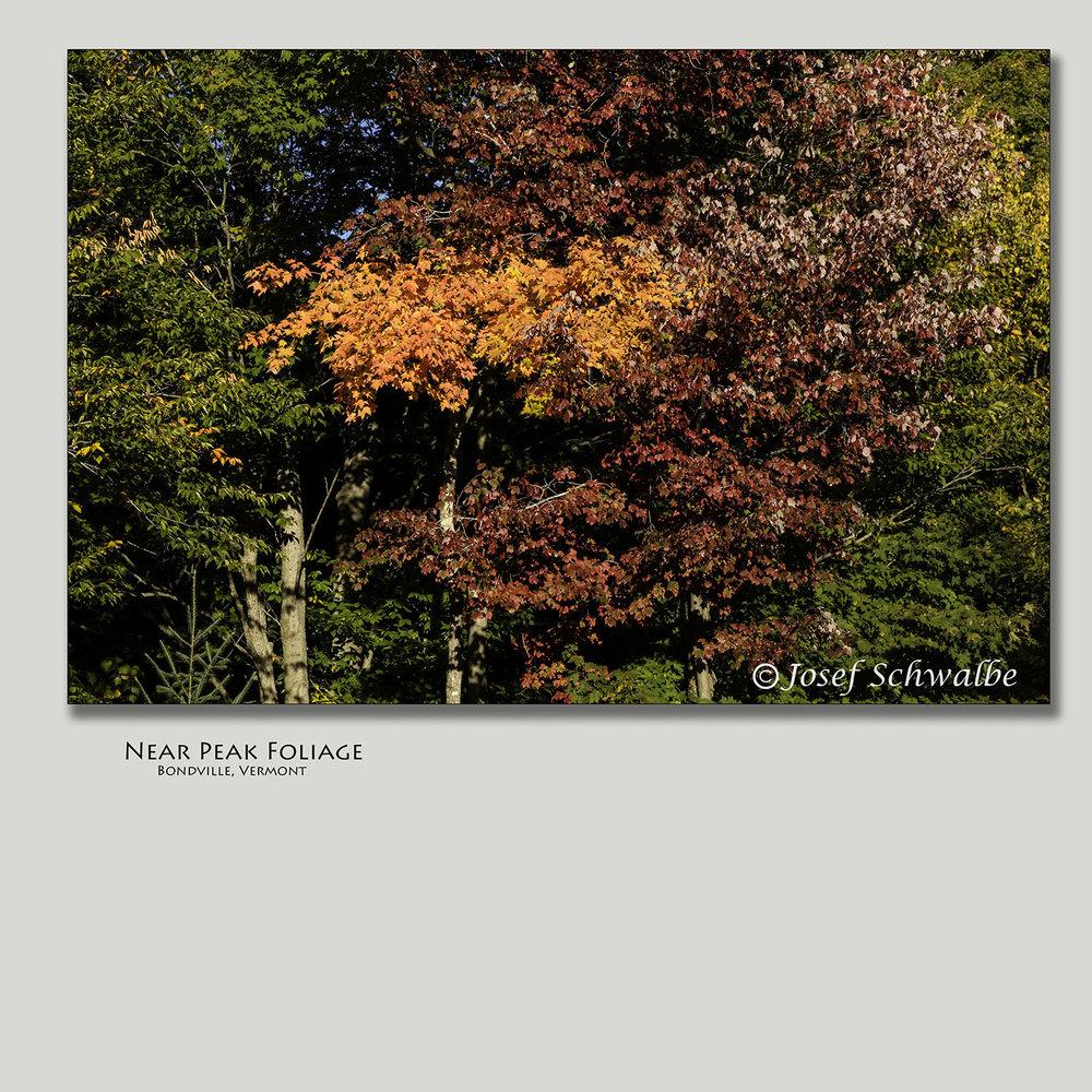 NearPeakFoliage.jpg