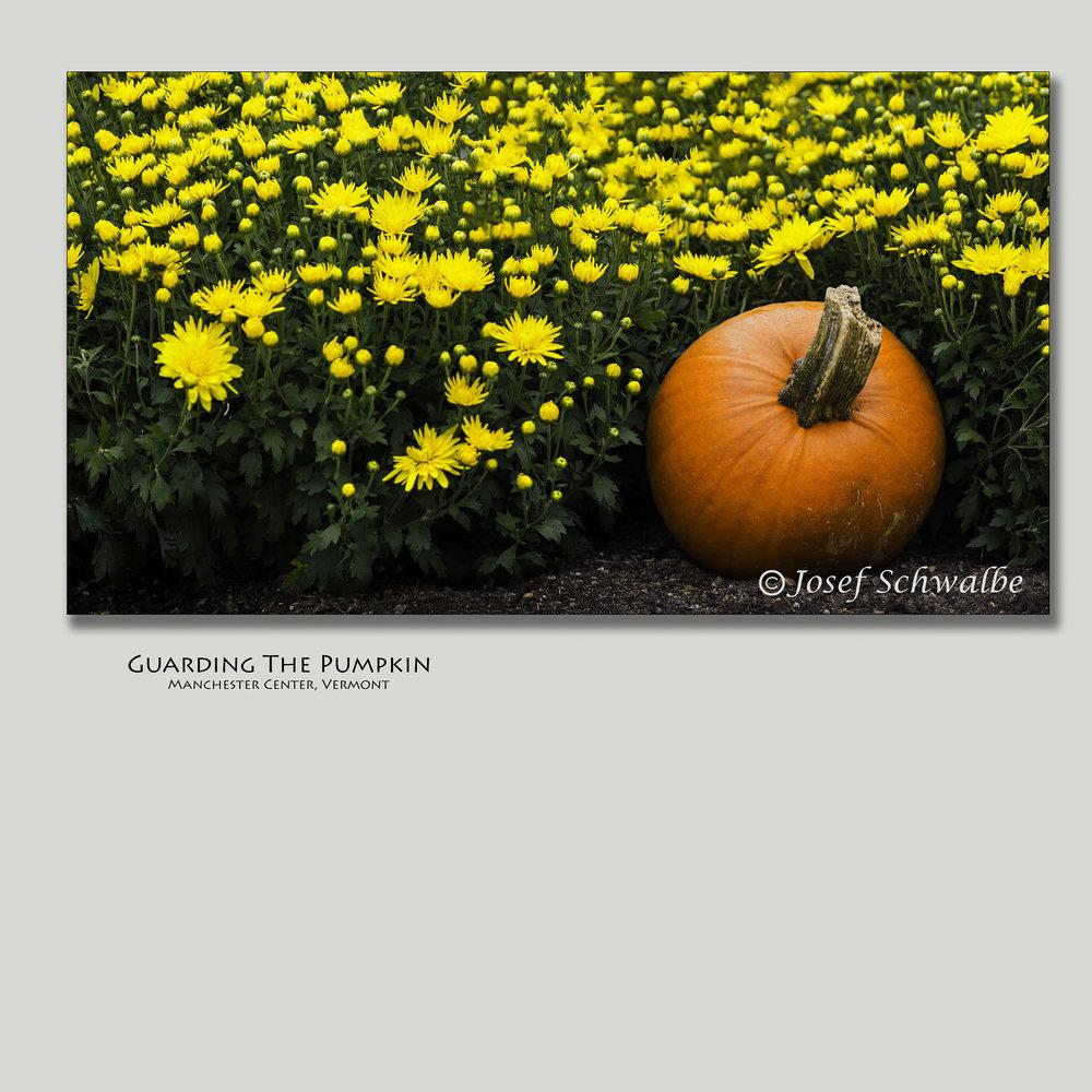 GuardingThePumpkin.jpg