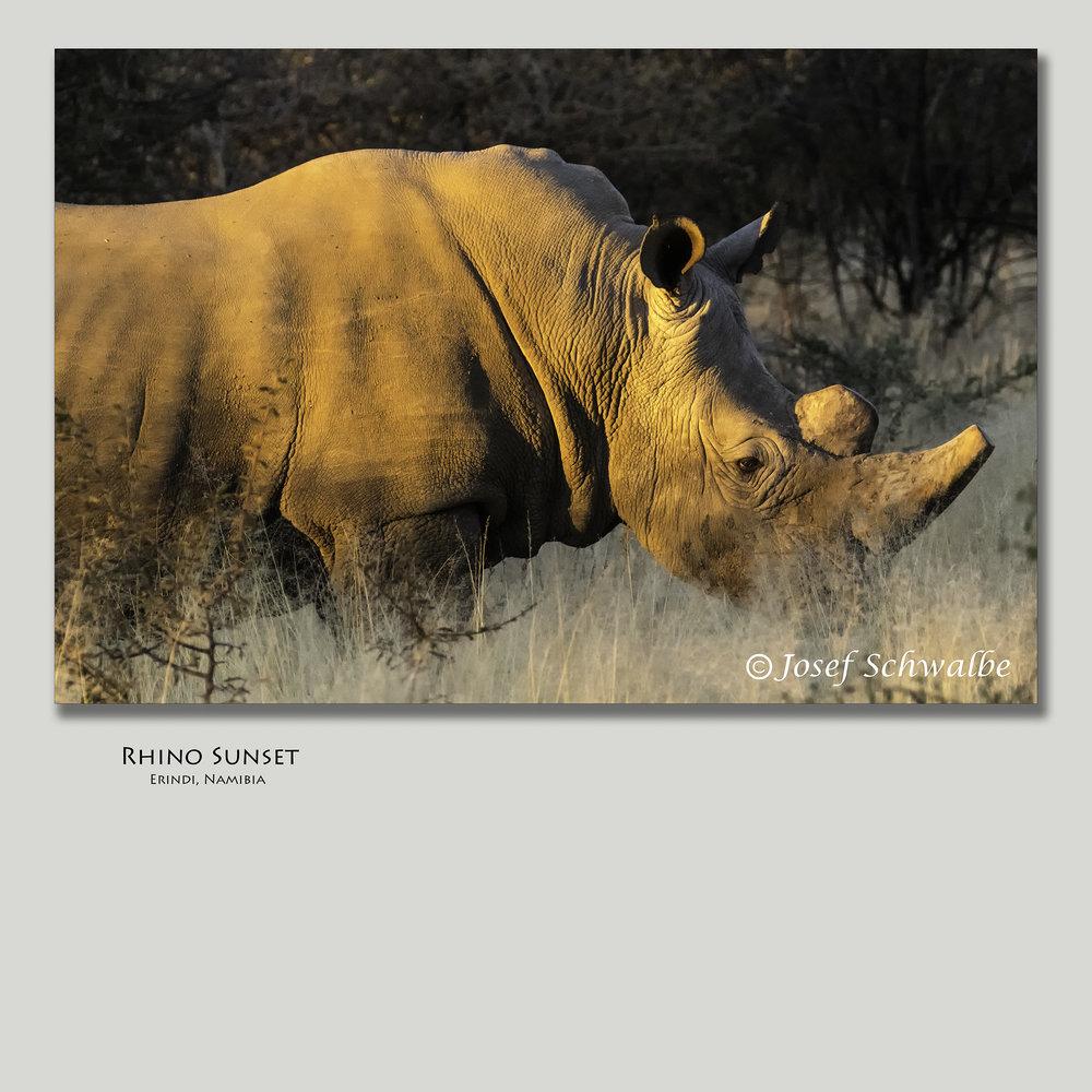 RhinoSunset.jpg