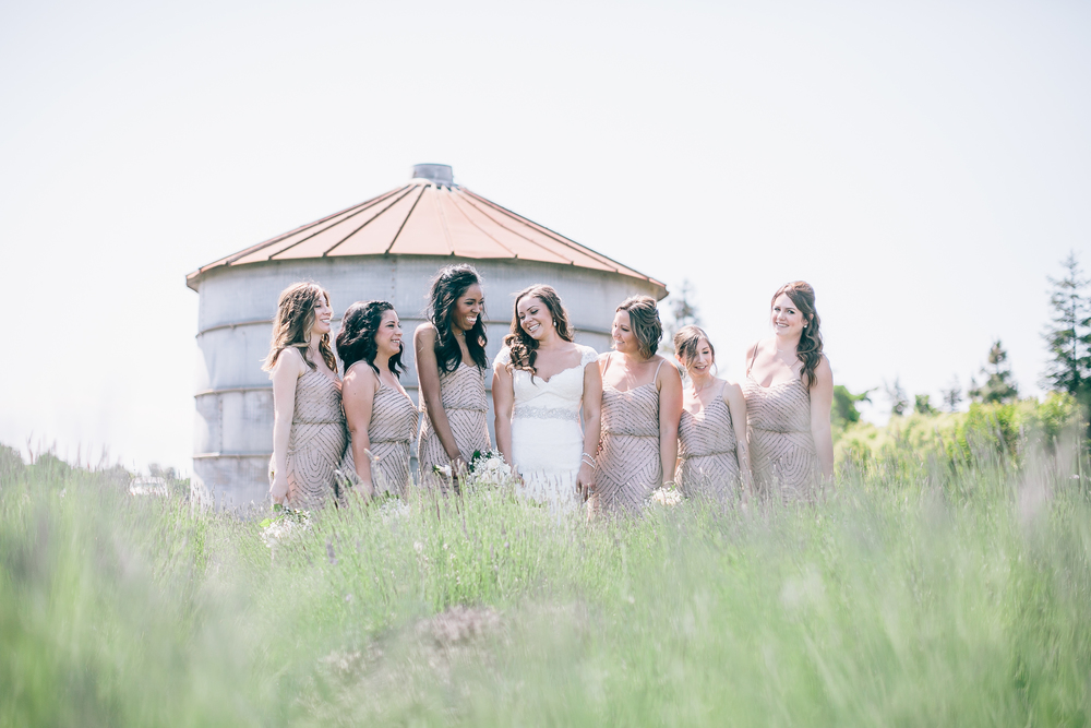 Lavender Farm Wedding