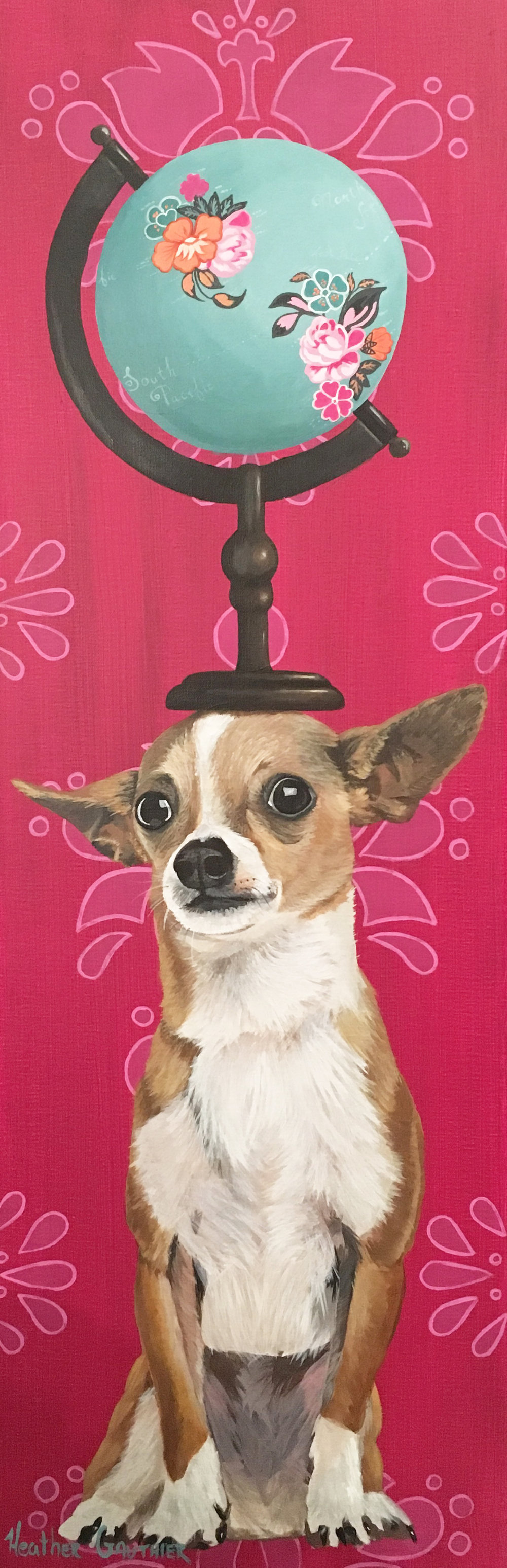 InternationalChihuahua.jpg