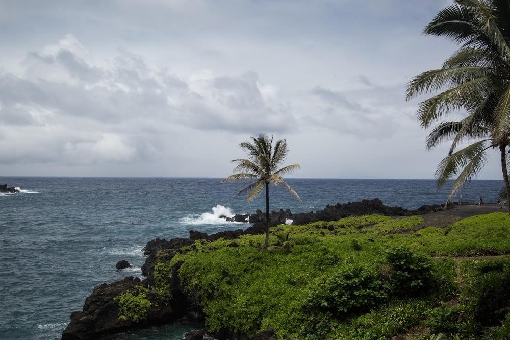 hawaii+road+to+hana-270.jpg
