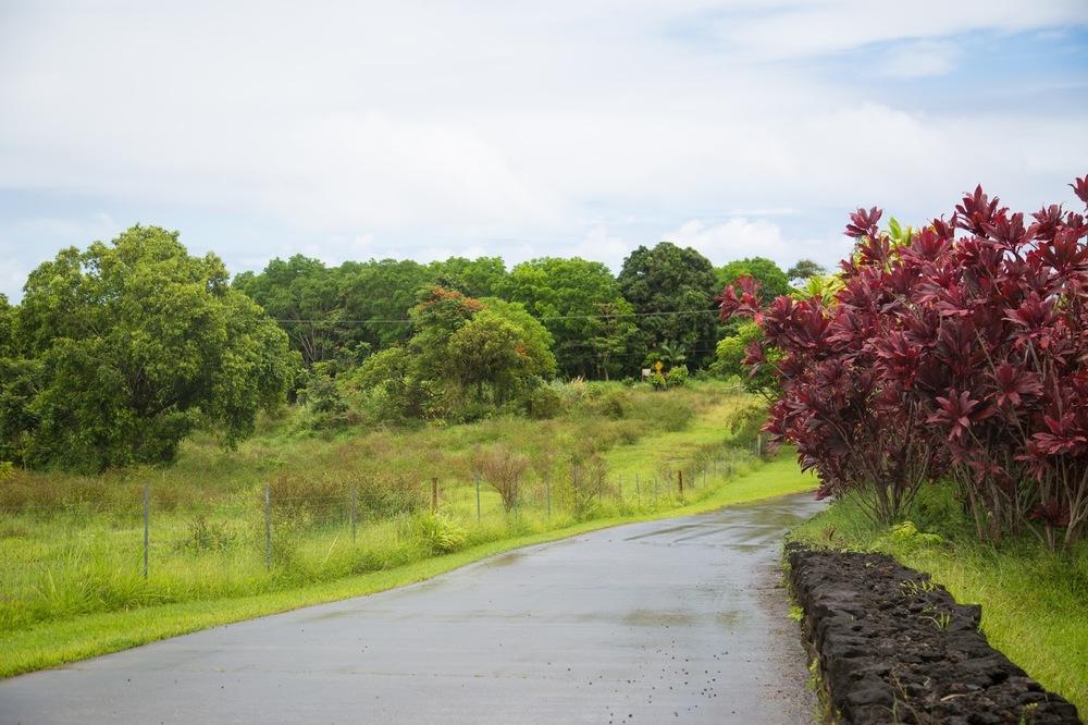 hawaii+road+to+hana-241.jpg