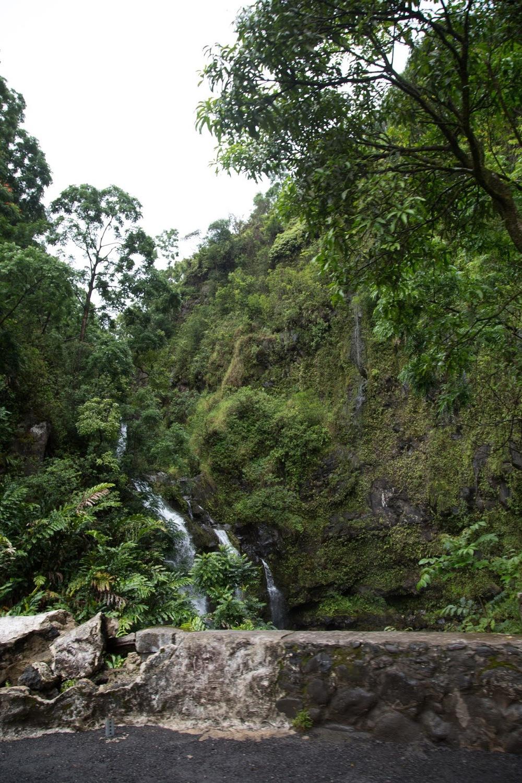 hawaii+road+to+hana-207.jpg