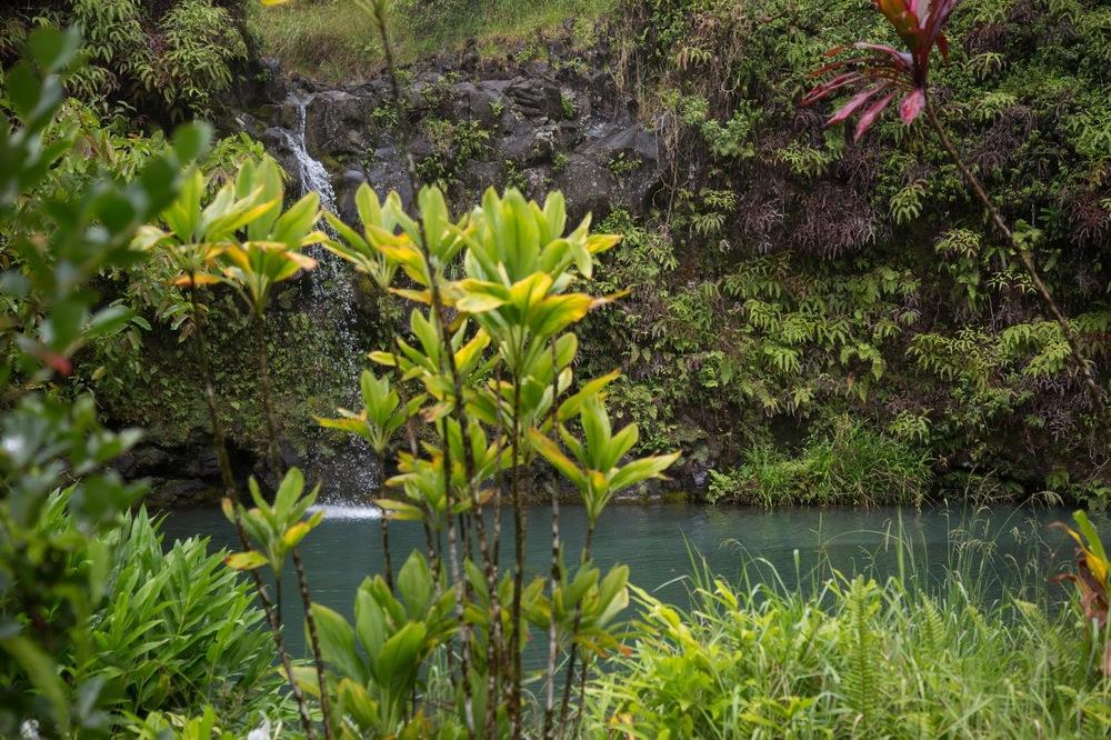 hawaii+road+to+hana-217.jpg