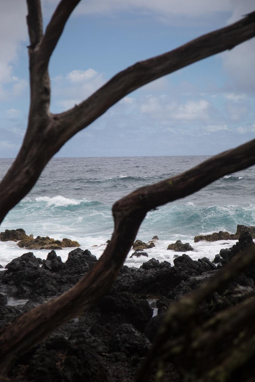 hawaii+road+to+hana-198.jpg