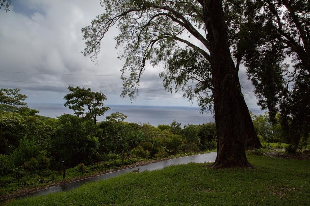 hawaii+road+to+hana-172.jpg
