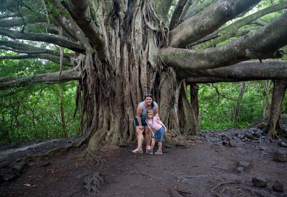 hawaii+road+to+hana-294.jpg