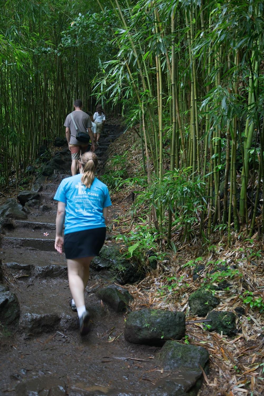 hawaii+road+to+hana-293.jpg
