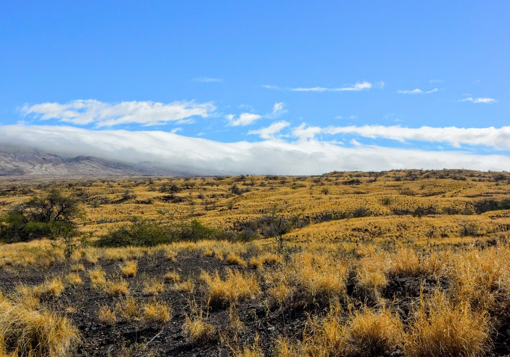 Clouds roll over Kohala Mountain