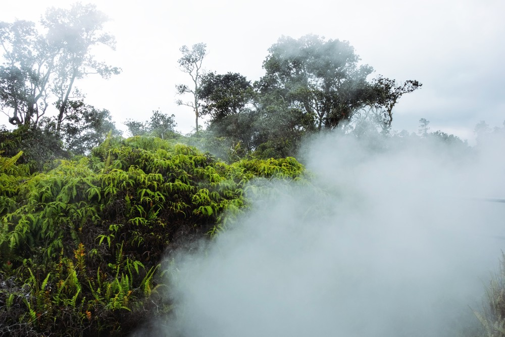Mists of a Volcano, at Volcanoes National Park