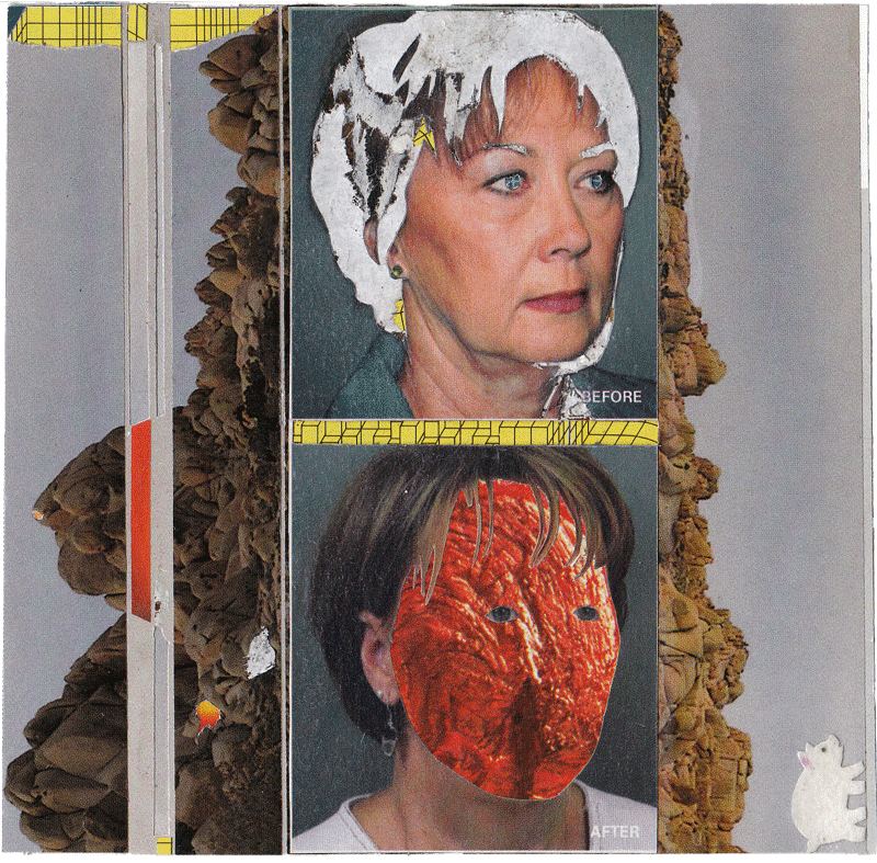before/after  found magazines, glue, rubber cement, fuzzy stickers  2008