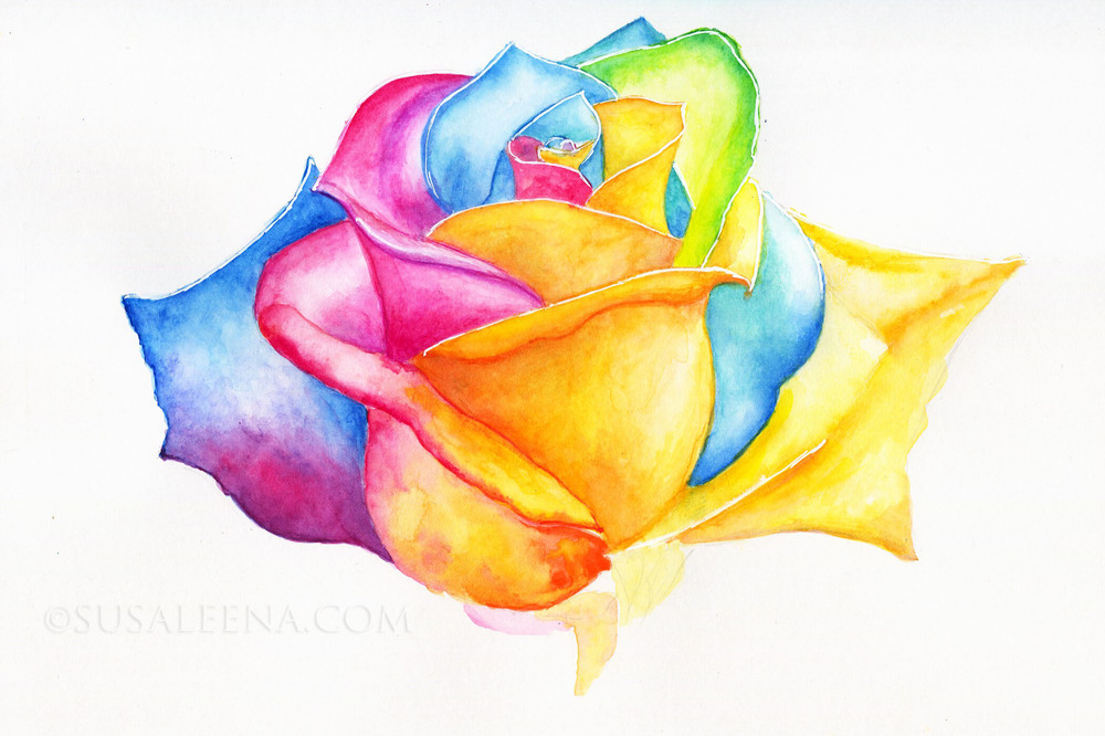 """Rainbow Rose"" - watercolors and watercolor pencils"