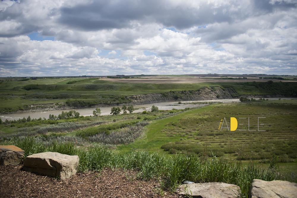 SaskatoonFarm3859.jpg
