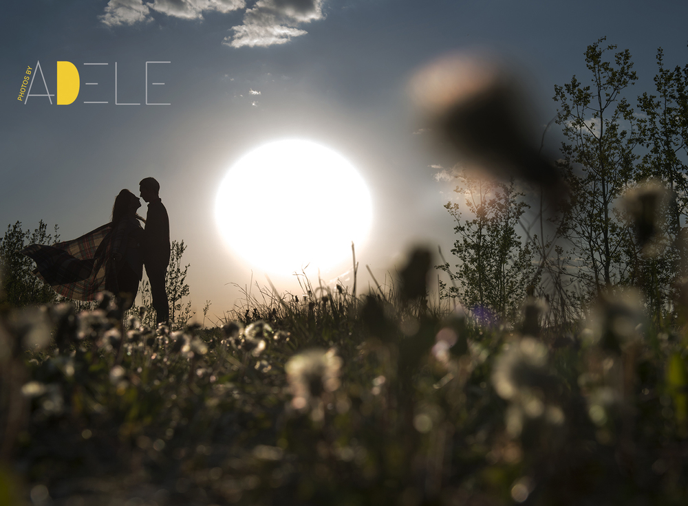 Calgary Wedding Photographer; Photos By Adele's Take On Spring W