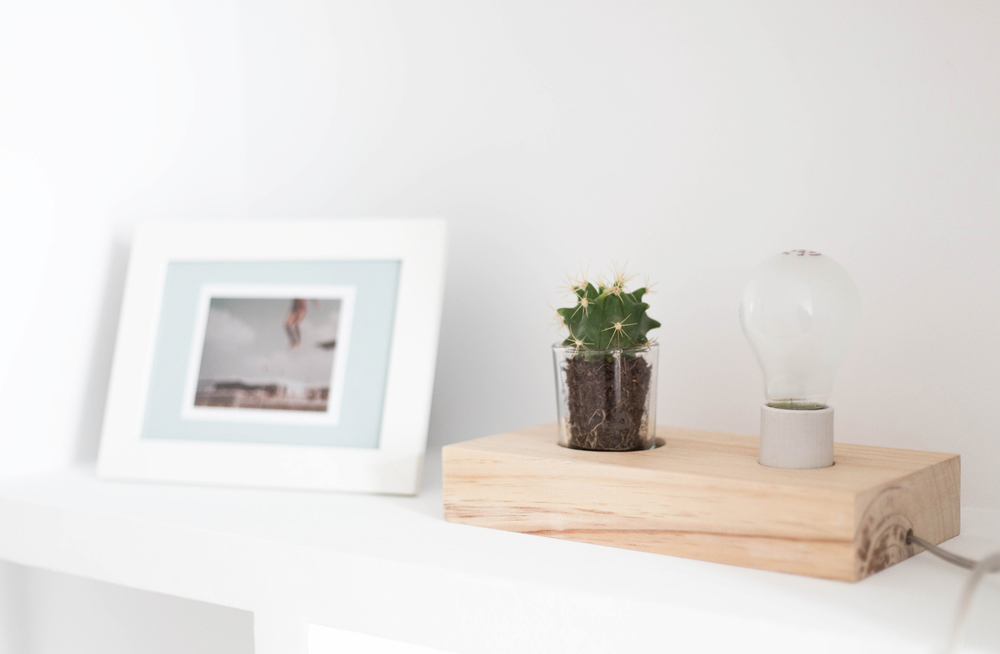 plant_lamp_cacto_by_chairyourlife