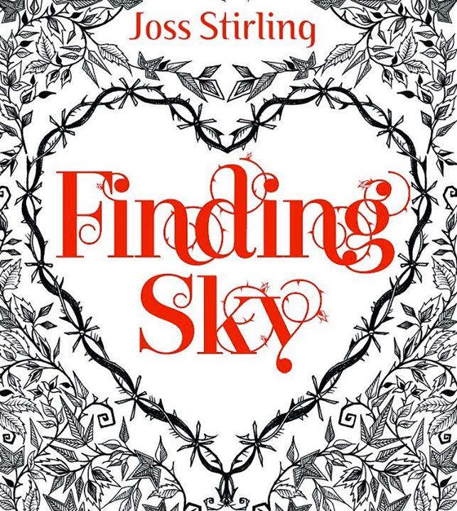 Finding Sky.jpg
