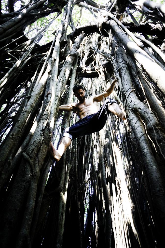 jiyoy-banyan-tree-74.jpg