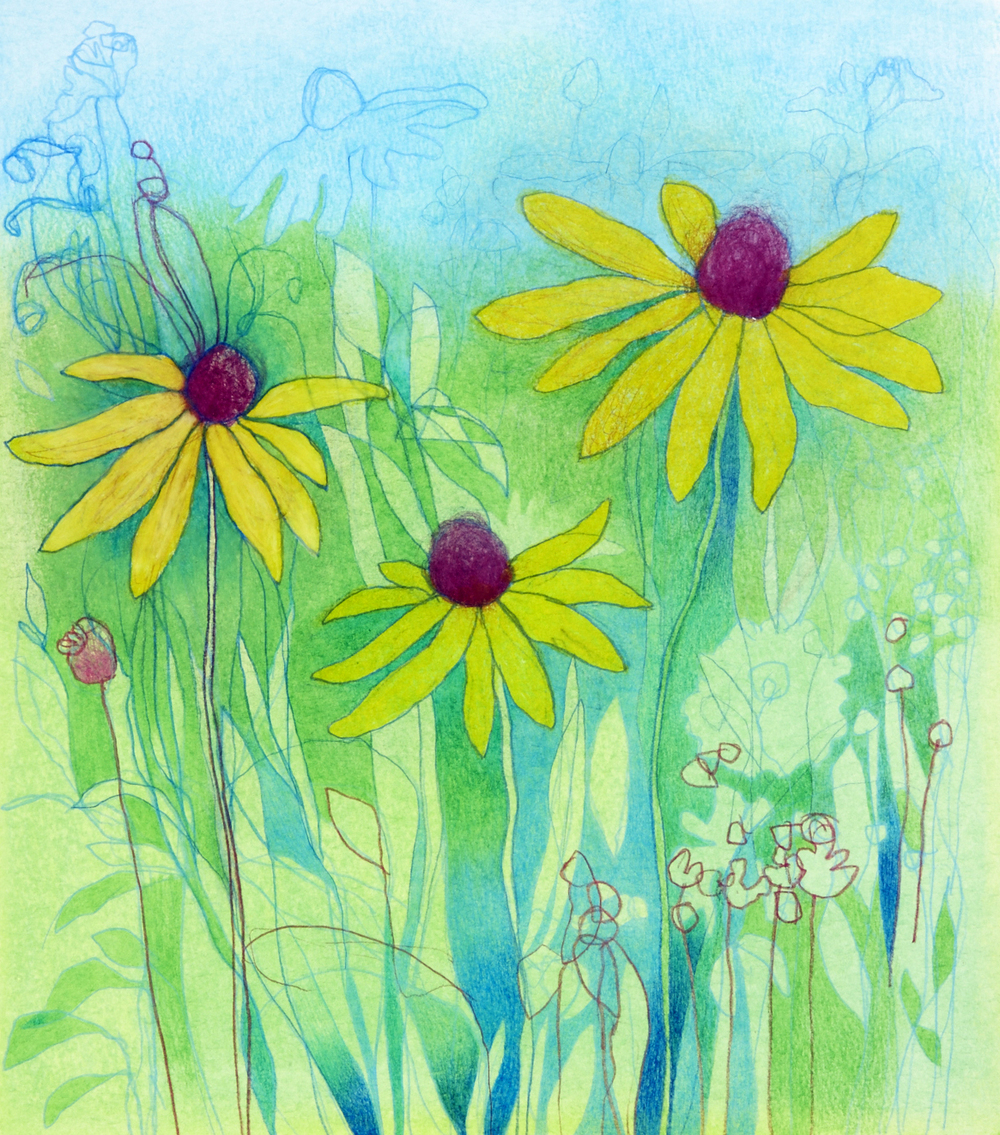 Wildflowers xiii