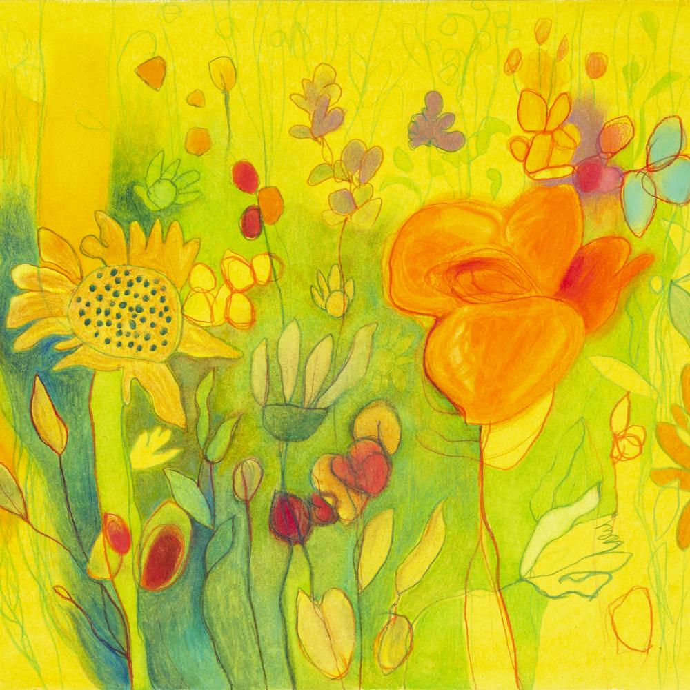 DavidLyonWildflowers iii - 087 - 350dpi SQCROP.jpg