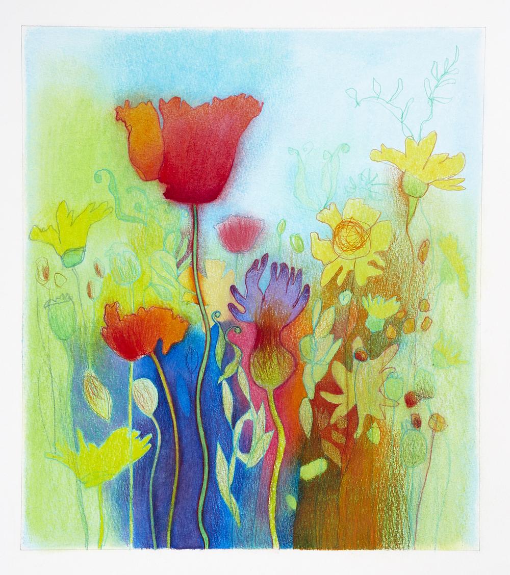 DavidLyonWildflowers ix - 091 - 150dpi.jpg