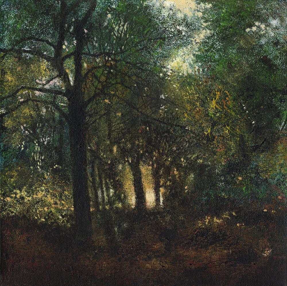Early Autumn Sunlight