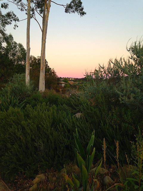 Twilight at Meditation Mount.