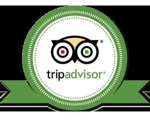 Tripadvisor Award.png