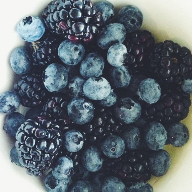 can't get enough berries!