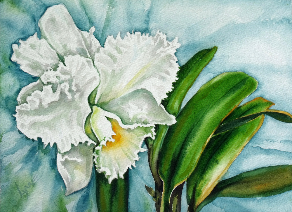 Ruth's Orchid.jpg