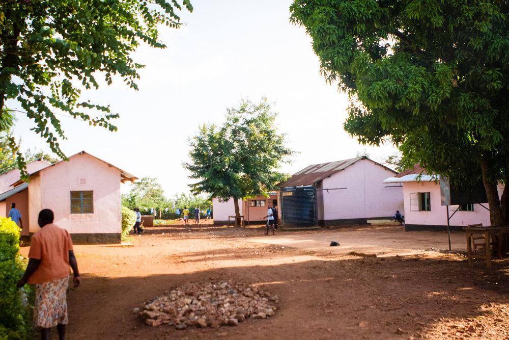 Kenya-jan_2017-240.jpg
