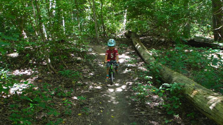 kids on bikes terrell park