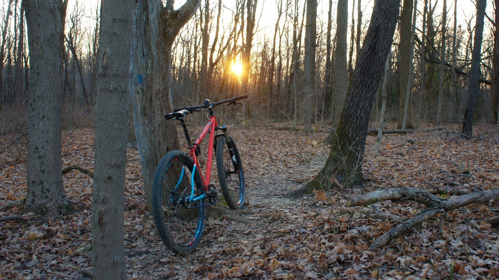 Raleigh XXIX at Landen Deerfield.