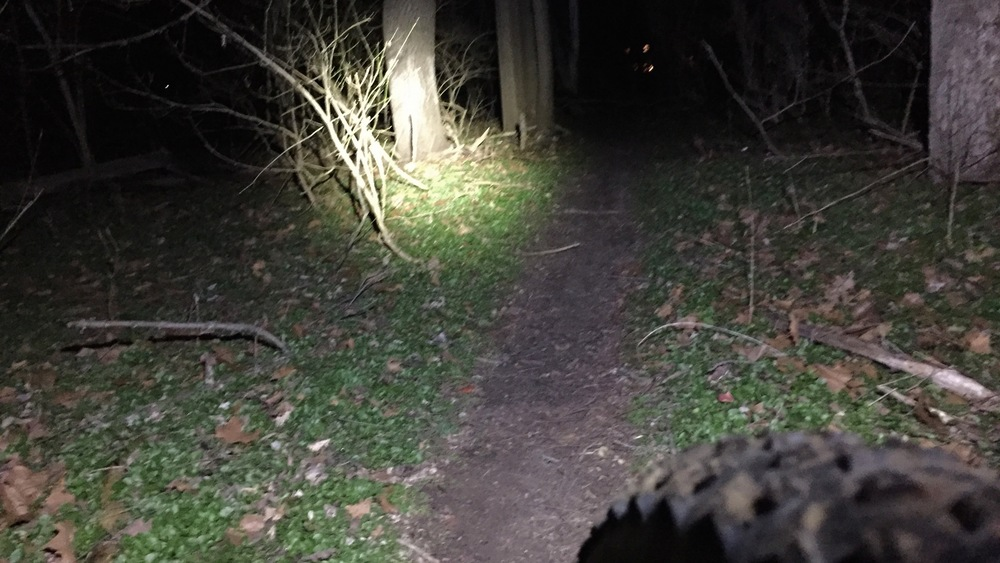 Singletrack at night...
