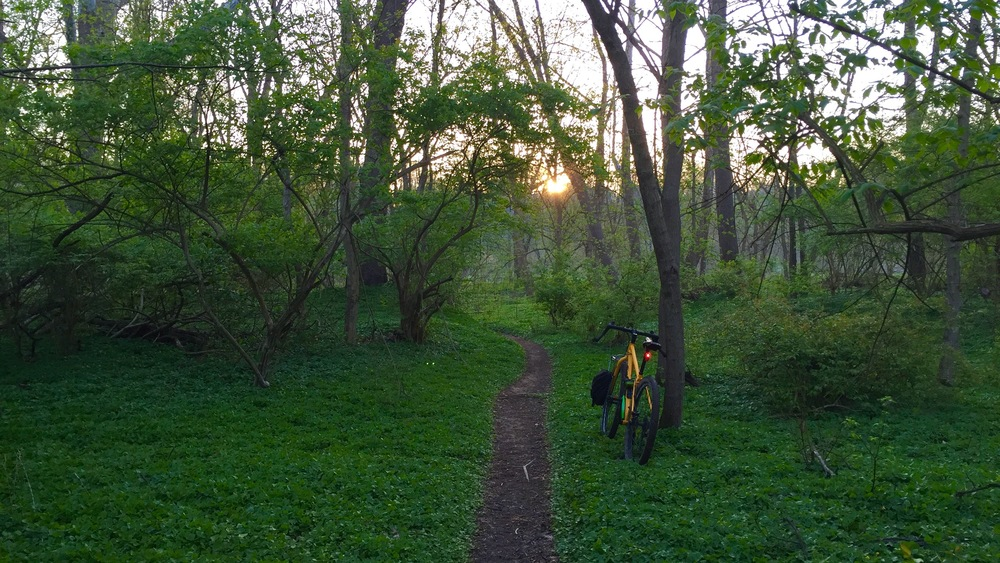 Sunrise, Terrell Park singletrack, and a Salsa Fargo.